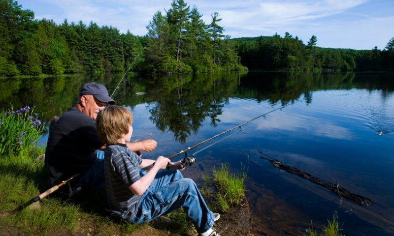 Going Fishing? Cast Your Line at the Right Time!